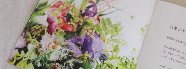 オラクルの花のイメージ