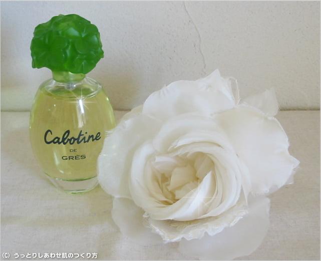 20110928_cabotine