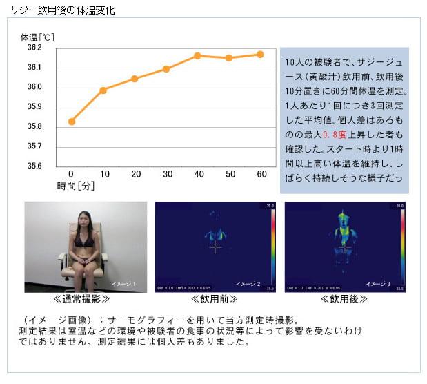 20111207_黄酸汁_サジー_体温変化