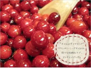 20120127_オイル美容_クランベリーシードオイル